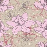 Teste padrão da orquídea Fotos de Stock