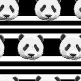Teste padrão da panda Fotografia de Stock