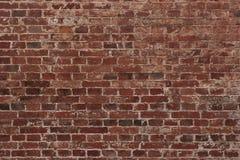 Teste padrão da parede de tijolo Fotos de Stock Royalty Free