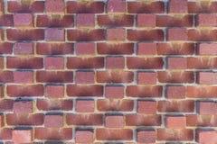 Teste padrão da parede de tijolo vermelho, Hobart Australia imagem de stock