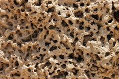 Teste padrão da pedra calcária foto de stock
