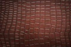 Teste padrão da pele do crocodilo Foto de Stock
