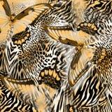Teste padrão da pele do leopardo da borboleta fotografia de stock