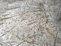 Teste padrão da pele da pedra imagens de stock royalty free