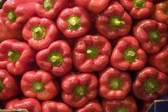 Teste padrão da pimenta Fotos de Stock Royalty Free