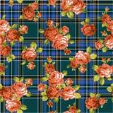 Teste padrão da rosa, Fotos de Stock Royalty Free