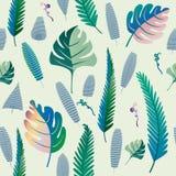 Teste padrão da samambaia e das folhas de palmeira Fundo sem emenda Vetor Illust ilustração stock