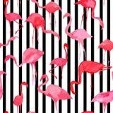 Teste padrão da silhueta da aquarela do flamingo, listrado preto e branco ilustração stock