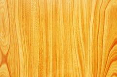Teste padrão da superfície de madeira - possa Imagem de Stock