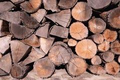 Teste padrão da textura de madeira marrom do fundo do log Foto de Stock