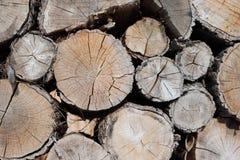 Teste padrão da textura de madeira marrom do fundo do log Foto de Stock Royalty Free