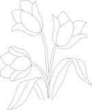Teste padrão 02 da tulipa Imagem de Stock Royalty Free
