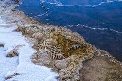 Teste padrão das bactérias - Yellowstone no inverno Fotos de Stock