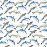 Teste padrão das baleias da aquarela Fotografia de Stock