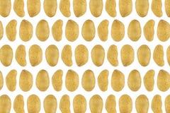 Teste padrão das batatas Fotografia de Stock Royalty Free