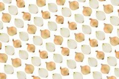 teste padrão das cebolas Fotografia de Stock Royalty Free