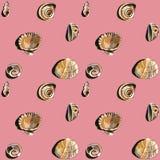 Teste padrão das conchas do mar do mar vário ilustração stock