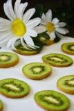 Teste padrão das fatias do fruto de quivi no fundo branco fotos de stock royalty free