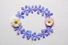Teste padrão das flores fotos de stock royalty free