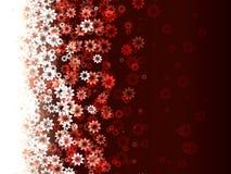 Teste padrão das flores Imagem de Stock