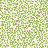 Teste padrão das folhas Imagem de Stock