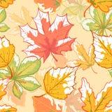 Teste padrão das folhas de outono ilustração do vetor