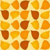 Teste padrão das folhas de outono Foto de Stock Royalty Free