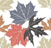 Teste padrão das folhas de outono Fotografia de Stock Royalty Free