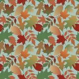 Teste padrão das folhas de outono com fundo azul Fotos de Stock Royalty Free