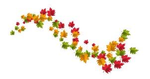 Teste padrão das folhas de outono do esboço do vetor Imagens de Stock
