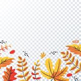 Teste padrão das folhas de outono no fundo transparente ilustração stock