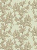 Teste padrão das folhas Textura floral Backgound sem emenda da folha Fotografia de Stock
