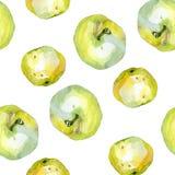 Teste padrão 1 das maçãs da aquarela Imagem de Stock Royalty Free