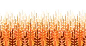 Teste padrão das orelhas do trigo Fundo da agricultura do vetor Campo de trigo Imagem de Stock Royalty Free
