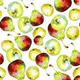 Teste padrão 1 das peras das maçãs da aquarela Foto de Stock