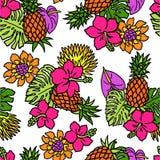 Teste padrão das plantas tropicais Foto de Stock Royalty Free