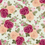 Teste padrão das rosas Foto de Stock