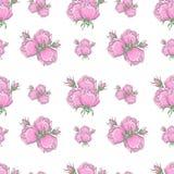 Teste padrão das rosas Foto de Stock Royalty Free