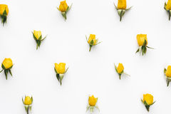 Teste padrão das rosas amarelas Fotografia de Stock Royalty Free