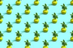 Teste padrão das tangerinas na luz - fundo azul fotos de stock