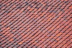 Teste padrão das telhas de telhado do templo Foto de Stock Royalty Free