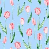 Teste padrão das tulipas da aquarela Dia internacional do ` s das mulheres Para o projeto, o cartão, a cópia ou o fundo Foto de Stock Royalty Free