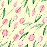 Teste padrão das tulipas da aquarela Dia internacional do ` s das mulheres Para o projeto, o cartão, a cópia ou o fundo Fotografia de Stock Royalty Free