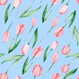 Teste padrão das tulipas da aquarela Dia internacional do ` s das mulheres Para o projeto, o cartão, a cópia ou o fundo Imagem de Stock