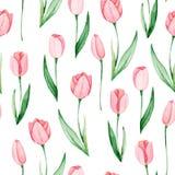 Teste padrão das tulipas da aquarela Dia internacional do ` s das mulheres Para o projeto, o cartão, a cópia ou o fundo Foto de Stock