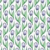 Teste padrão das tulipas 3 Fundo sem emenda da aquarela com as flores tiradas mão Fotografia de Stock