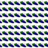 Teste padrão das uvas Foto de Stock Royalty Free