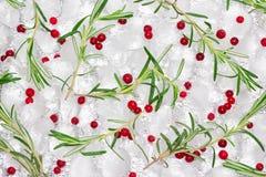 Teste padrão de alecrins frescos com as bagas vermelhas congeladas em cubos de gelo Imagens de Stock