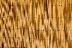 Teste padrão de bambu Fotos de Stock