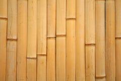 Teste padrão de bambu Fotos de Stock Royalty Free